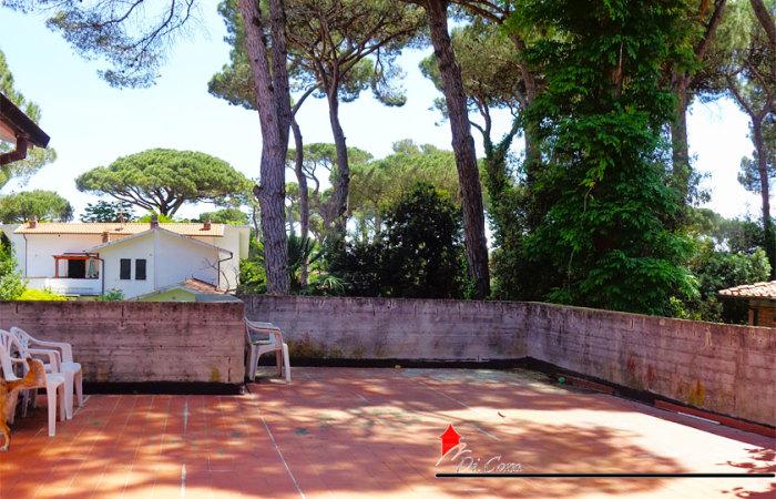 Bilocale 40 mq in affitto a Tirrenia