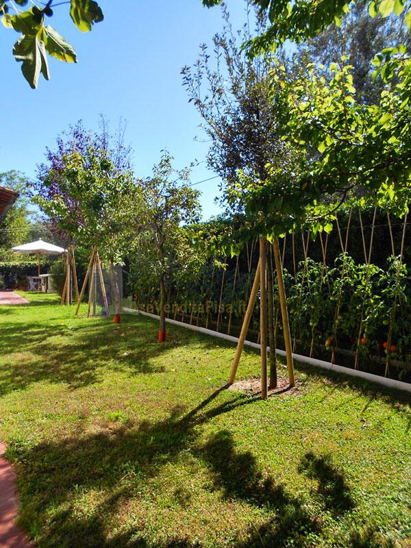 Villa 260 mq in vendita a tirrenia pisa for Giardino 80 mq