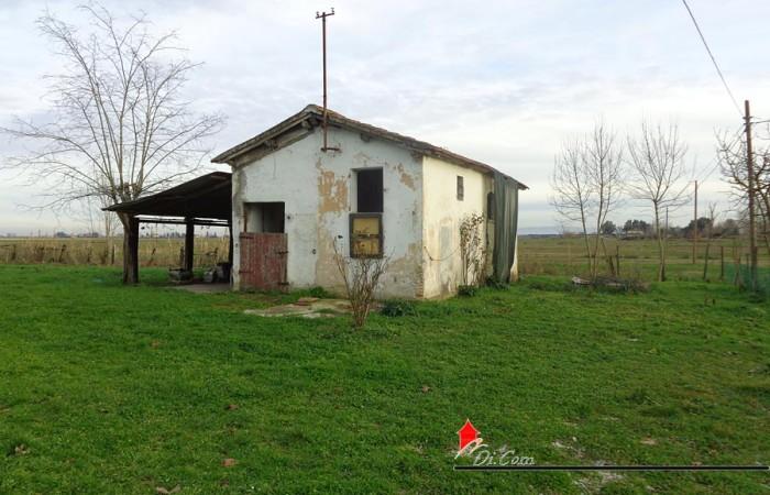casale-rustico-vendita-pisa-coltano-esterno-6