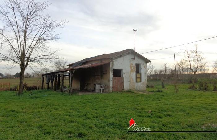 casale-rustico-vendita-pisa-coltano-esterno-7